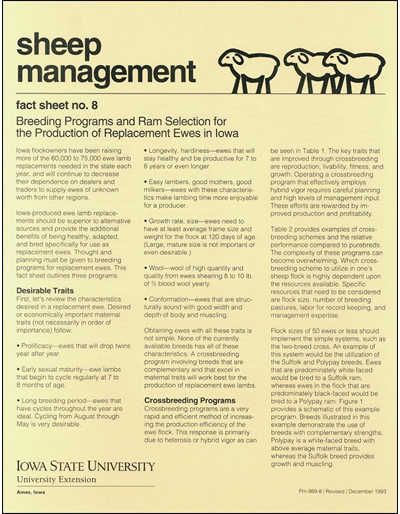 Breeding Programs and Ram Selection for the Production of Replacement Ewes in Iowa - Sheep Management