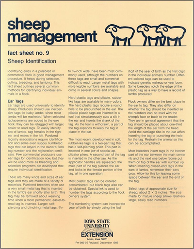Sheep Identification - Sheep Management