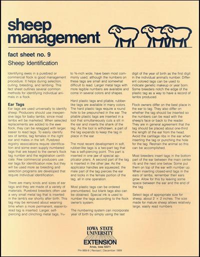 Sheep Identification - Sheep Management