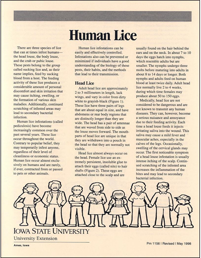 Human Lice