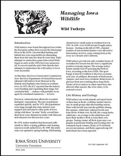 Wild Turkeys -- Managing Iowa Wildlife