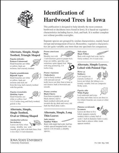 Identification of Hardwood Trees in Iowa