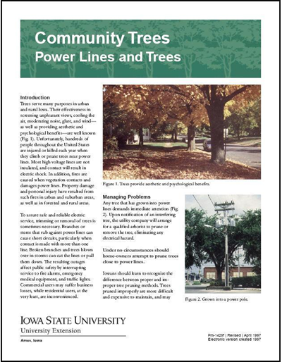 Power Lines and Trees -- Community Trees