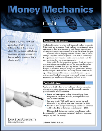 Credit and Analyzing Your Debts Worksheet -- Money Mechanics