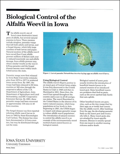 Biological Control of the Alfalfa Weevil in Iowa