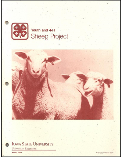 Youth and 4-H Sheep Project