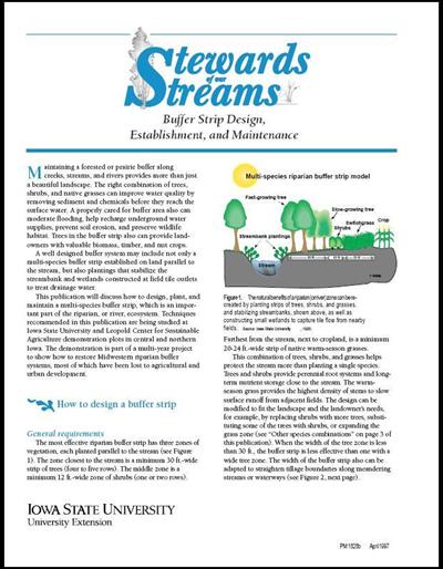 Buffer Strip Design, Establishment and Maintenance -- Stewards of Our Streams