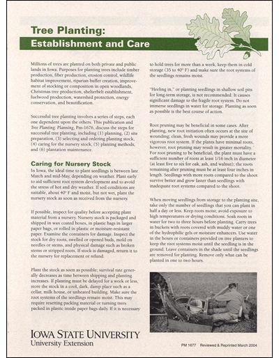 Tree Planting: Establishment and Care