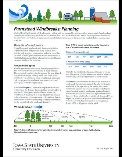 Farmstead Windbreaks: Planning