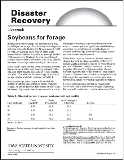 Livestock: Soybeans for Forage - Disaster Recovery Series