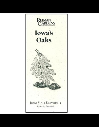 Iowa's Oaks -- Reiman Gardens
