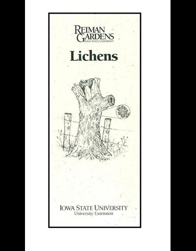 Lichens -- Reiman Gardens