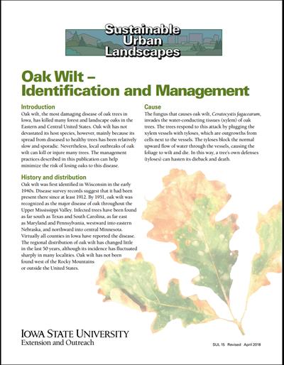 Oak Wilt - Identification and Management - Sustainable Urban Landscapes