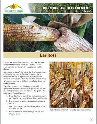 Corn Disease Loss Estimates For the United States and ...