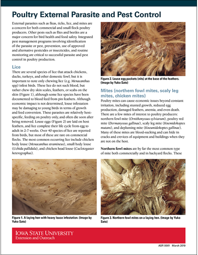 Poultry External Parasite and Pest Control